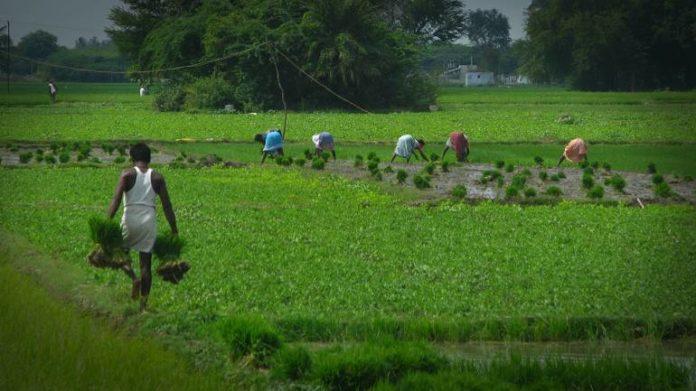 PM Narender Modi administration commences pension program for farmers