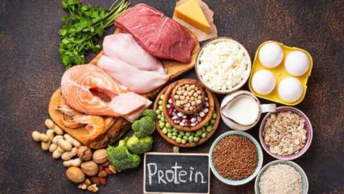 Top 10 Foods Highest in Protein